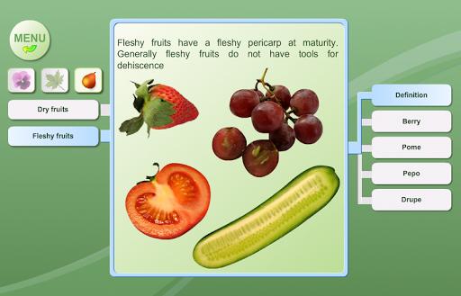 玩書籍App|生物學。植物形態免費|APP試玩