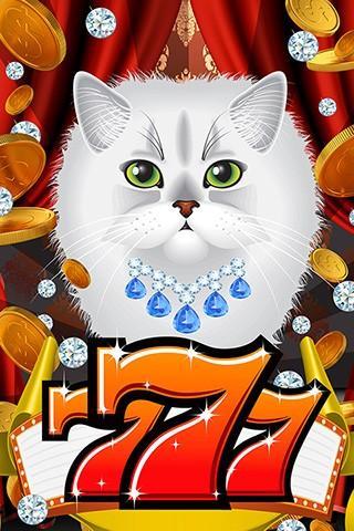 Socialite Kitten Slots - FREE