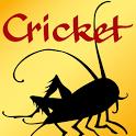 Cricket Magazine icon