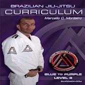 Download BJJ BLUE-PURPLE Lvl3 Jiu Jitsu APK
