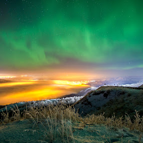 Judah Hill Lights by Charles Adam - Landscapes Starscapes ( lights, winter, alberta, canada, cold, fog, northern lights, aurora, aurora borealis, frost, night, valley )
