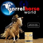 Barrel Horse World icon