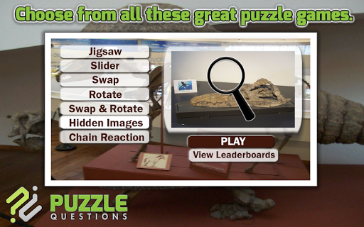 Free Fossil Puzzle Games