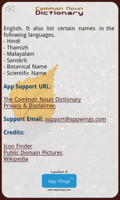 The Common Noun Dictionary - screenshot