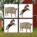 Memorize! Farm logo