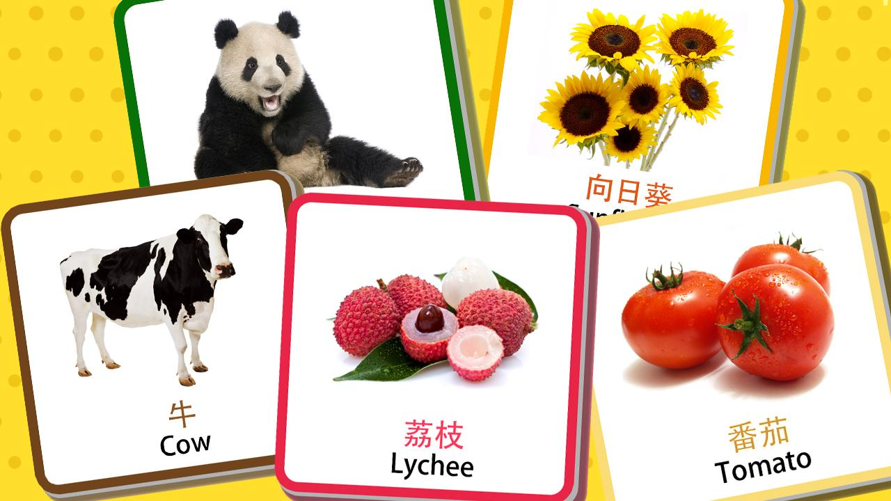 Chinese Flashcards Cantonese Android Apps On Google Play