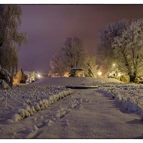 Winter at park by Vanja Vidaković - City,  Street & Park  Night (  )