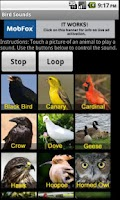 Screenshot of Bird Sounds