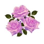Flower Mauve Roses Sticker