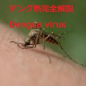 Dengue virus Guide