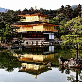 Golden Pavillion by Lenny Sharp - Buildings & Architecture Public & Historical ( japan, kyoto, golden pavillion, lake, architecture )