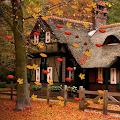 Autumn Live Wallpaper download