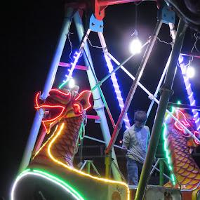 Dragon by Rahul Savaliya - City,  Street & Park  Night ( new, color, joy, dragon, children, fun, smile, light, boy )