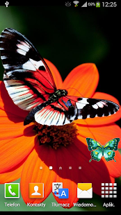Butterflies Live Wallpaper - screenshot thumbnail