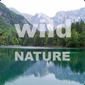 Puzzle Wild Nature