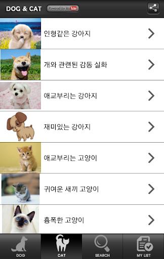 강아지와 고양이의 재밌는 영상모음 배꼽주의