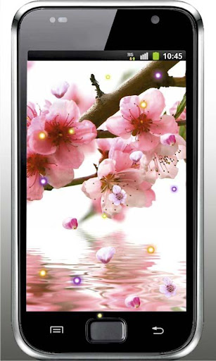 Sakura East HD live wallpaper