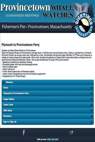 Cape Cod Whale Watch Ptown