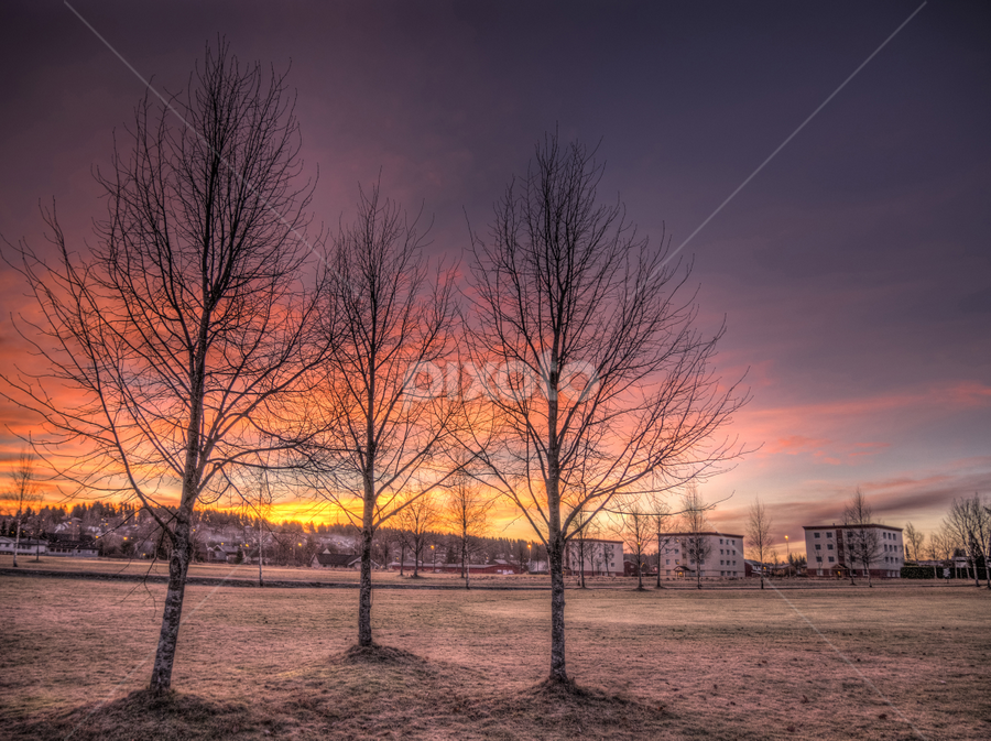 Askim, Norway by IP Maesstro - City,  Street & Park  City Parks ( clouds, building, park, hdr, grass, landscape, maesstro, morning, norway, ip, field, winter, sky, tree, golf, sunrise, askim,  )