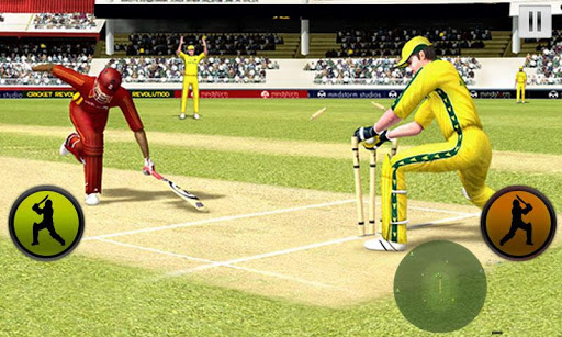 Play Cricket Worldcup 2015