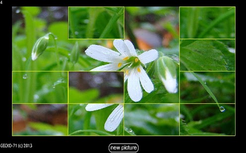 Picture Puzzle HD