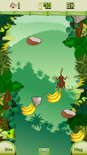 Dive Monkey Dive