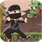 Ninja and Dragons
