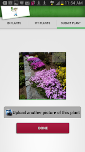 Mister Smarty Plants- screenshot thumbnail