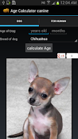 Screenshot of Age Calculator canine free