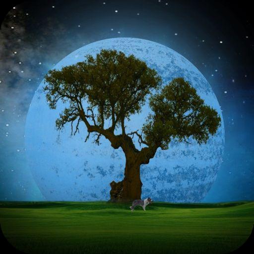 Приложения в Google Play – Сонник Ванги Толкование снов