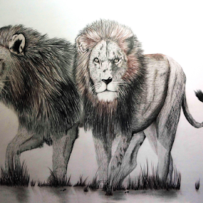 Ghost & the Darkness(tribute) by Paul Murray - Drawing All Drawing ( pencil, lion, nature, oil based, wildlife, drawing )