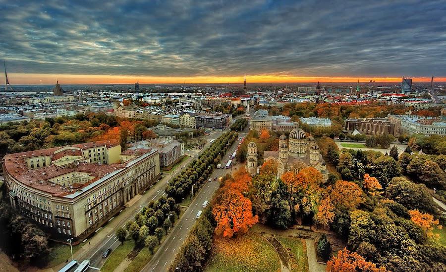 by Marina Đanić - City,  Street & Park  Vistas