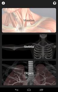 Anatomy Quiz Pro 玩醫療App免費 玩APPs