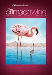The Crimson Wing: Mystery of the Flamingo