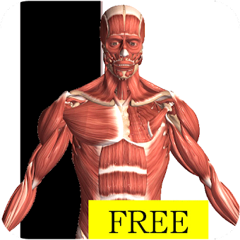 Baixar Visual Anatomy Free para Android