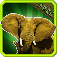 Animal Sounds for Kids Free 7.1