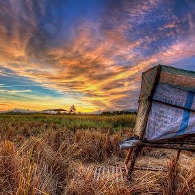 Harvest by Johan Wan - Landscapes Prairies, Meadows & Fields