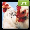 Animal Quiz Lite logo