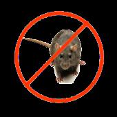 Rats Repeller v2.0