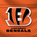Cincinnati Bengals Theme logo