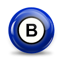 Bingo Setup Hall logo