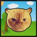 Catapult the Cat icon