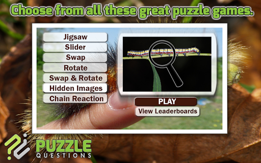 Caterpillar Puzzle Games