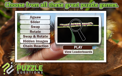 Caterpillar Puzzle Games- screenshot thumbnail