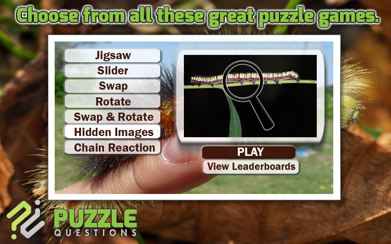 Caterpillar Puzzle Games- screenshot