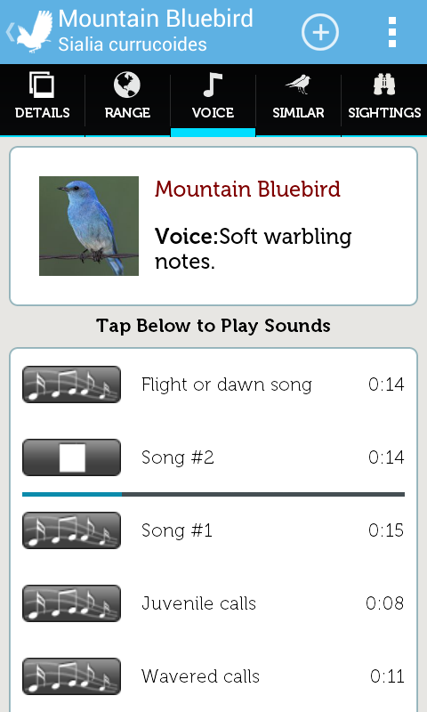 Audubon Birds Pro - screenshot
