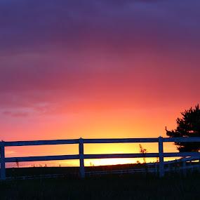 by Crissy Barnes Blanton - Landscapes Sunsets & Sunrises
