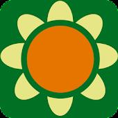 Flora composietenfamilie