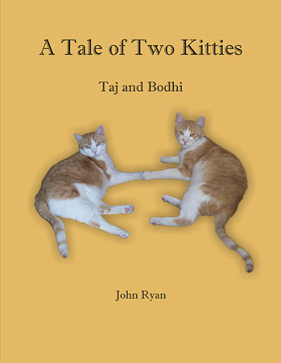 A Tale of Two Kitties -- Taj and Bodhi cover