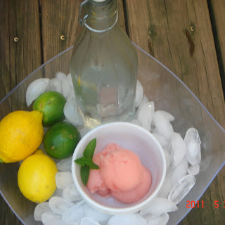 Lemon, Lime Campari Sorbet Float.